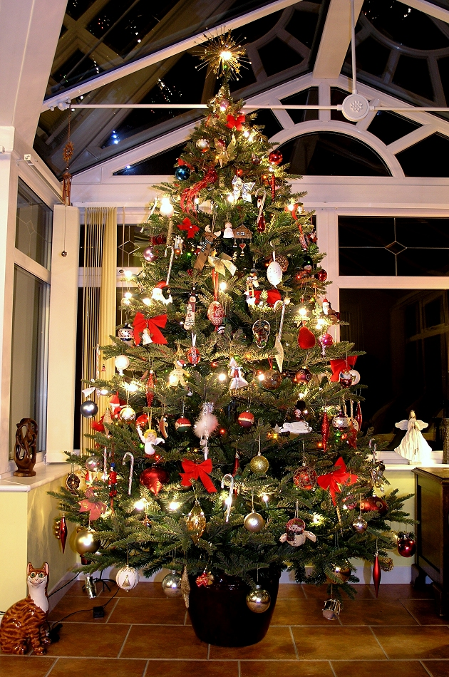 AltogetherChristmas.com: Christmas Trees