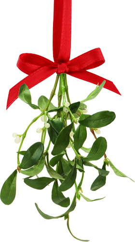 the history of mistletoe - Mistletoe Christmas